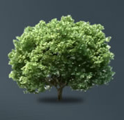 Risparmio energetico di 86,18 alberi salvati grazie alla produzione di Eurograte Grigliati
